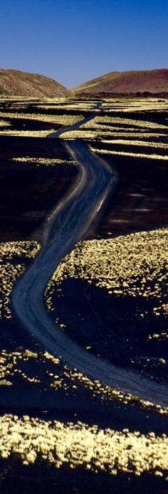 Camino entre Volcanes - La Payunia - Mendoza - Argentina  Argentina Photography हमारी साइट पर अधिक जानकारी प्राप्त करें  http://storelatina.com/argentina/travelling  #viaje #viajar #viajando #viajeargentina  Argentina Photography  Oplysninger om vores hjemmeside  http://storelatina.com/argentina/travelling