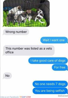 #FunnyTexts About Cute Puppies vs. Wrong Number ft.#FunnyDogs