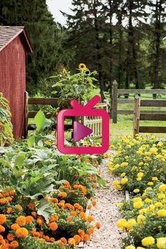Wunderschöne Blumen Outdoor Furniture, Outdoor Decor, Park, Home Decor, Log Projects, Wonderful Flowers, Nice Asses, Decoration Home, Room Decor