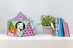A Geometric Cardboard 'Design House' For Your Cat To Play In