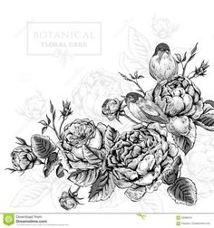 Vintage Style Decorative Floral And Bird Frame Royalty Free Stock ...