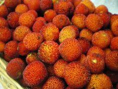 Portuguese Food, Portuguese Recipes, Exotic Fruit, Algarve, Portugal, Strawberry, Autumn, Book, Healthy