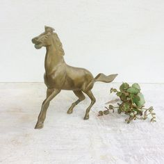 Mid Century Modern Solid Brass Horse Mustang Figurine, Vintage Brass Metal Wild Stallion Statue, Equestrian Brass Collectible Home Decor Baby Sea Turtles, Brass Metal, Solid Brass, African Cichlids, Betta Fish, Tropical Fish, Vintage Metal, Baby Animals, Equestrian