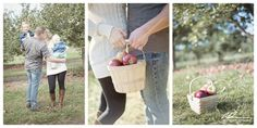 Minneapolis photographer Anna Grinets Photography - apple orchard family photo session