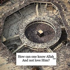 The more you know about your Creator, Allah Almighty...the more you will find yourself fully loving Him and wanting to worship Him.