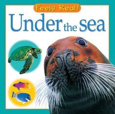 Under the Sea (Feels Real Books) by Christiane Gunzi