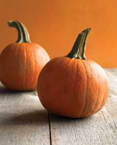 "See the ""Pumpkin Basics"" in our  gallery"
