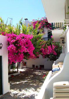 santoriniblog:  View of a courtyard - Paros island