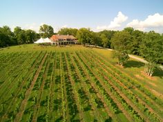 "'Northern Virginia Vineyard'- Located in the beautiful Loudoun County countryside between the historic towns of Aldie and Middleburg, Cana Vineyards and Winery is a magnificent place to enjoy wine and take in the unique beauty of the surrounding mountains. Cana Vineyards and Winery is an ideal location with great facilities, vineyards and surroundings make it … Continue reading ""Northern Virginia Vineyard"""