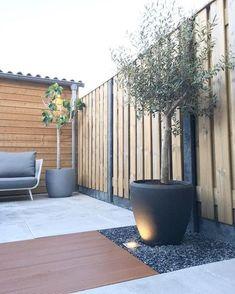 Let's go outside ein-de-lijk onze tuin is zo goed als af! Happy days!! ✌️☀️#lustvoorhetoog #vijgenboom #garden #tuin #kijkjeindetuin…