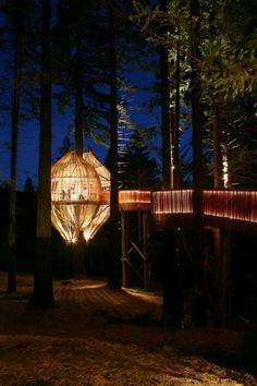 YELLOW TREEHOUSE restaurant by Pacific Environments Architects    http://www.facebook.com/media/set/?set=a.319518674751495.64934.103064036396961&type=3#!/photo.php?fbid=319519224751440&set=a.319518674751495.64934.103064036396961&type=3&theater
