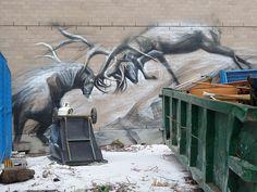Street Art/Graffiti - Toronto 2013
