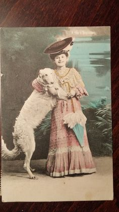 Antique Afghan Dog Postcard color tinted Borzoi by PUGHALLVINTAGE   SOLD