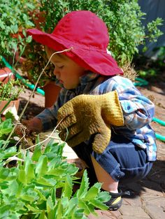 Growing herbs is a wonderful way for children to learn about gardening. Most herbs are easy to grow and need little care. Learn more about starting a children's herb garden in this article.