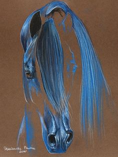 Blue Outlined Equine More