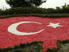 The Beautiful Turkish Flag Decorated with Red and White Stones Desktop Pictures, Wallpaper Pictures, Abstract Photography, Red And White, Kids Rugs, Creative, Outdoor Decor, Namaste, Toast