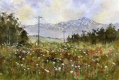 """Kiyoharu Narazaki """"Mt. Taisetsuzan and wildflowers """" Kamifuranocho, Hokkaido, Japan"""