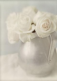 White Roses Photograph, Soft Focus Flower Photography, Wedding Decor, Shabby Chic Home, French Country Home