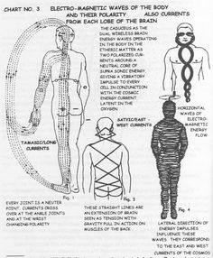 The Body's Magnetic waves ...Polarity Therapy finds your release and balances.