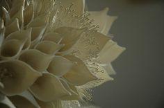Nuala O'Donovan - Handmade ceramics that puts 3-D printing to shame.