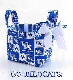 Kentucky wildcats fabric basket!!!