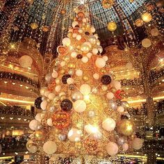 Christmas in Paris  #FareCompare  Share your holiday pics with us and the best will be featured.  Photo by @edtr.photography