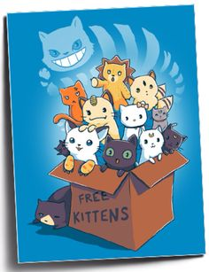Free Kittens. Cool tshirt for anime cat fans. Cheshire Cat, Kyo from Fruits Basket, Kon from Bleach, Kilala from Inuyasha, Meowth, Hello Kitty, Gatomon from Digimon, Luna, Artermis, Diana from Sailor Moon, and Schrödinger's cat & Jiji from Kiki's Delivery Service.   I WANT THIS SO BAD LOL
