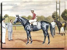 """Native Dancer. Winner of 21 of 22 races, his only loss was a close 2nd in the Kentucky Derby. Nicknamed """"The Grey Ghost"""", he became a successful sire through his daughter Natalma, who produced Northern Dancer, and his son Raise A Native who founded a successful sire line."""