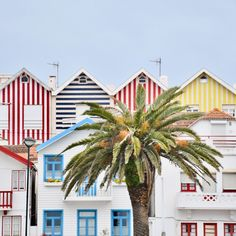 Explore the Charming Streets of Costa Nova, Portugal Best Places In Cyprus, Best Places In Portugal, Visit Portugal, Portugal Travel, Spain And Portugal, Portugal Trip, Costa, Algarve, Portugal Holidays