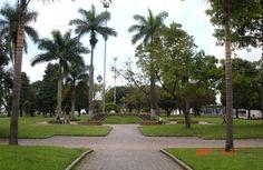 Gobernación liderará jornada de limpieza y embellecimiento al Parque Olaya Herrera