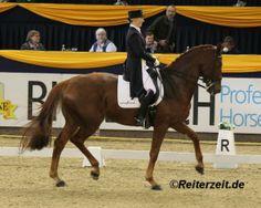 Kristy Oatley hier m. Louisa 34 (in Hannover 2013) reitet Du Soleil -http://reiterzeit.de/kristy-oatley-reitet-du-soleil/