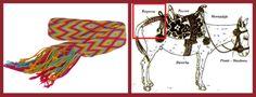 Sabias que este mal llamado fajon Wayuu, es la kutpera es un elemento importante en la silla de montar, antiguamente esta técnica era oficio del hombre wayuu en el recuadro rojo se aprecia al lado derecho.