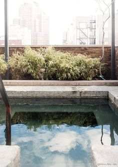 Penthouse TriBeCa Suite, The Greenwich Hotel, New York City, patio pool, Axel Vervoordt / Garance Doré