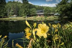 Zack Smith Photography North Carolina Brevard School of Music Center Wild…
