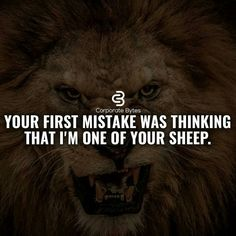 Do You Think Motivational Thoughts? Millionaire Lifestyle, Quote Of The Day, Lion Quotes, Animal Quotes, Motivational Quotes, Inspirational Quotes, Quotes To Live By, Chill Quotes, Work Quotes