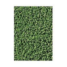 Carpets for Kids Soft Solids KIDply Grass Green Kids Rug