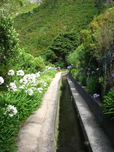 Levadas.Homes for sale in Madeira lose to levada walks visit: www.madeirapropertyguide.com