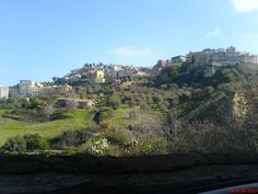 Loved living right next to this town!  i sure miss the cafes and the market every Friday!  Mineo, Sicily