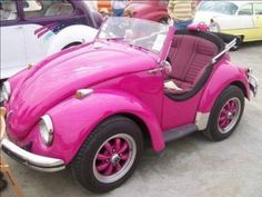 Pink vw bug omg a new car underneath a old beetle frame. It looks like one of the real mario karts. Me and Mr.Winkle with our hair in the wind.