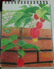 色鉛筆アートの世界-8ページ目