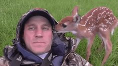 Rescued Fawn Refuses to Leave the Man Who Rehabilitated Her - My Modern Met