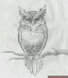 DeviantArt: More Like Owl Tattoo Design by Owl Tattoo Drawings, Art Drawings Sketches, Tattoo Sketches, Animal Drawings, Owl Tattoos, Drawing Owls, Branch Drawing, Fish Tattoos, Sleeve Tattoos
