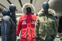 4b5ac40ed2f 86 Best 品牌—Canada Goose images in 2019 | Canada goose, Store, Retail