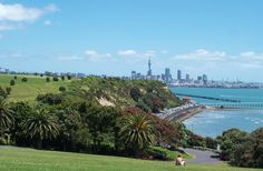 AUCKLAND - Google Search