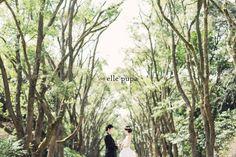 ロケーション前撮り & Pre Wedding film の画像|*ウェディングフォト elle pupa blog*
