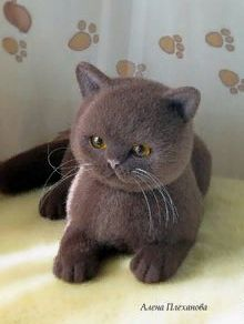 Wool Needle Felting, Needle Felted Animals, Felt Animals, Cute Animals, Kittens Cutest, Cats And Kittens, Felt Cat, Cat Doll, Cat Decor