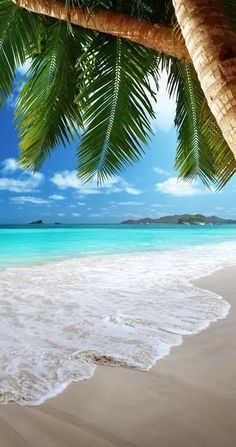 Pic of the Day...Tropical Invitation ---------------- #beach #waves #tropics #tropical #escape #beach #travel