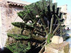 Antico Molino di Dolo : Dolo, Riviera del Brenta, a pochi km da Venezia, il suo centro caratteristico è il luogo ideale per una passeggiata, per un aperitivo con gli amici, per sedersi a leggere a bordo dell'acqua    Guarda l'album: http://www.brioweb.eu/foto/20111112Dolo/index.aspx | brioweb