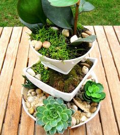 Instead of tossing out old bowls and serving dishes, try arranging them into a homemade moss and succulent planter.