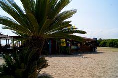 CHIRINGUITO - Chiringuito Calamar 2014 -
